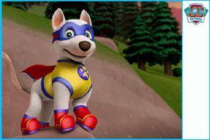 Apollo super perro