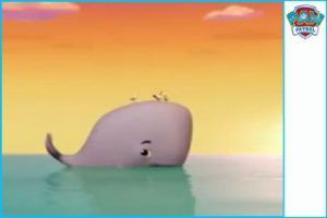 bebe ballena patrulla copia