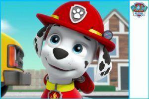 marshall patrulla canina