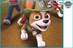 tracker patrulla canina